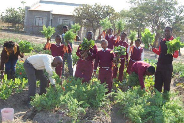 Ezweni School Bush Buck Ridge